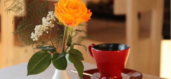 Puiduaida kohvik #7